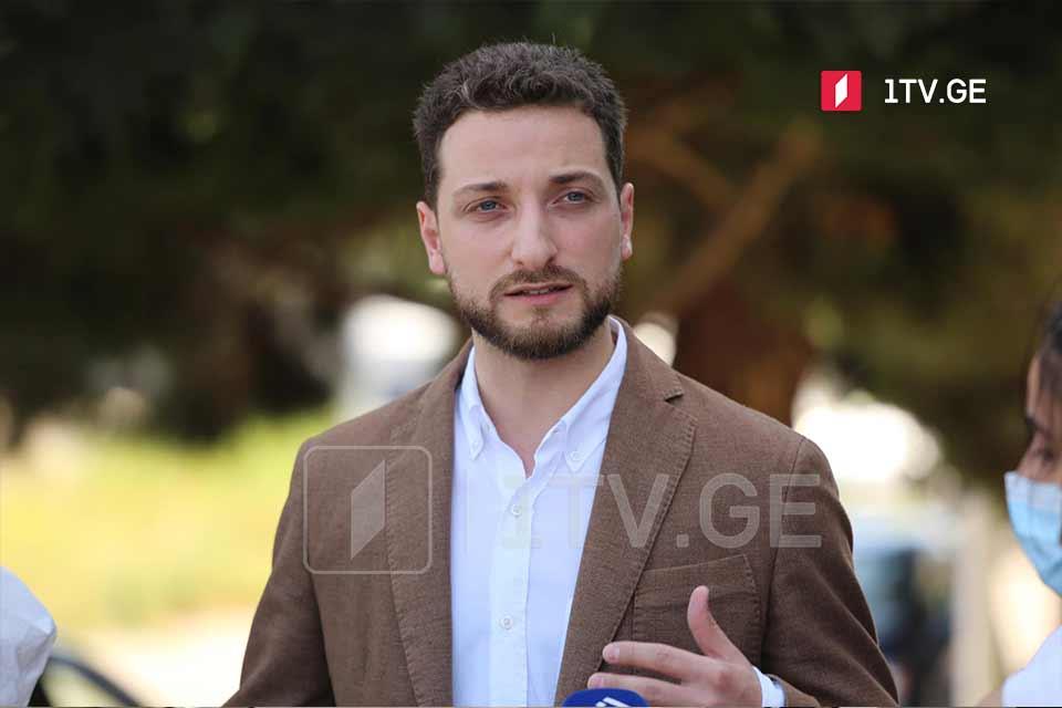 Объединенная грузинская оппозиция представит общих кандидатов в кратчайшие сроки