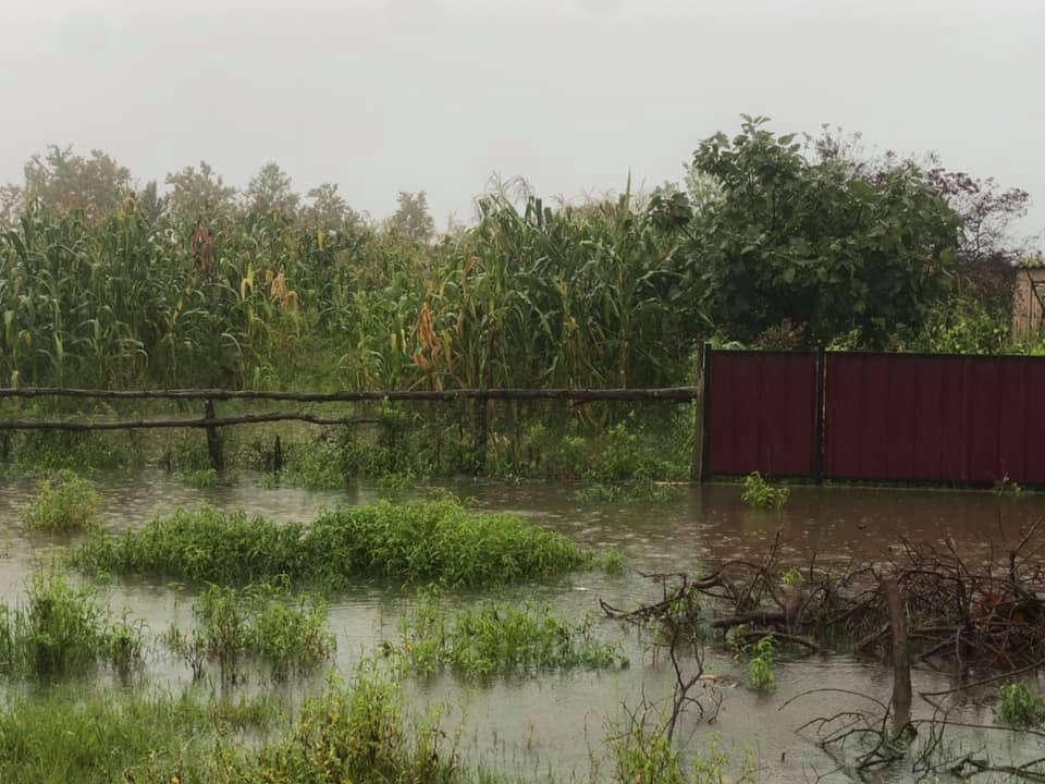ხობის მუნიციპალიტეტის სოფლებში უხვმა ნალექმა პრობლემები შექმნა