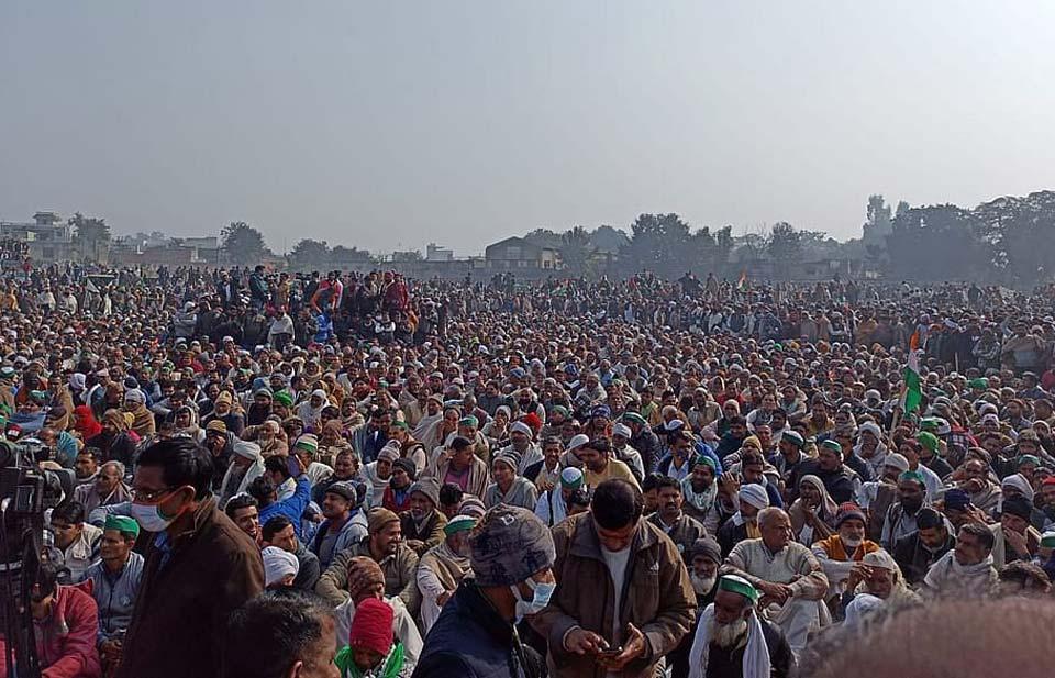 ინდოეთში სოფლის მეურნეობის ახალი კანონმდებლობა ნახევარ მილიონზე მეტმა ფერმერმა გააპროტესტა