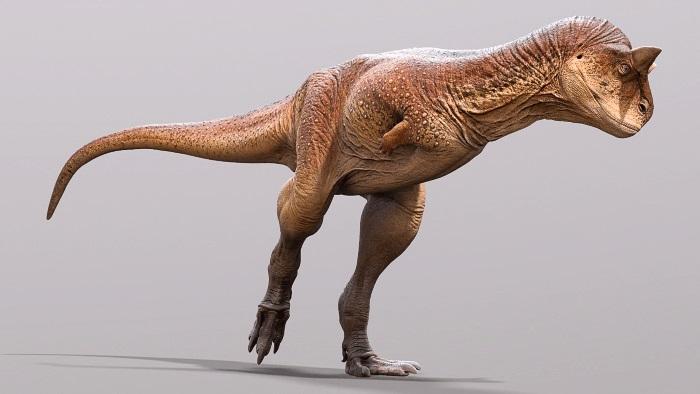 დინოზავრის გაქვავებული კანი მეცნიერებმა უმცირეს დეტალებში შეისწავლეს — #1tvმეცნიერება
