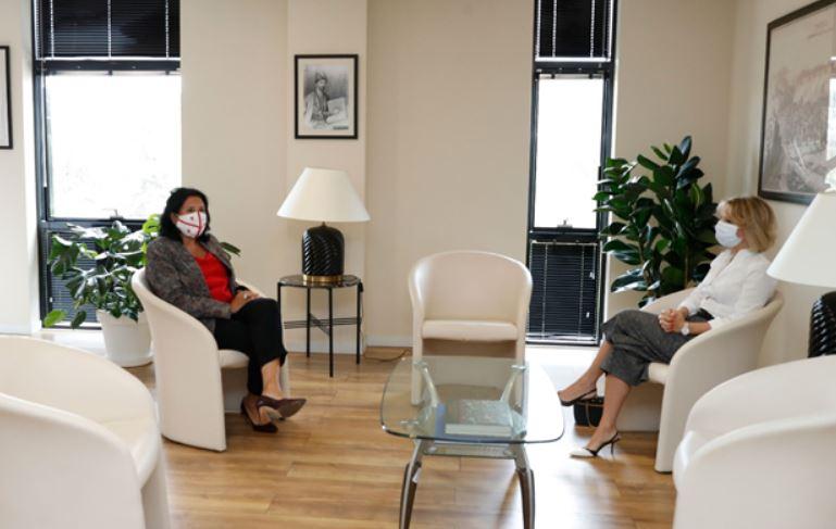 Саломе Зурабишвили встретилась с Народным защитником